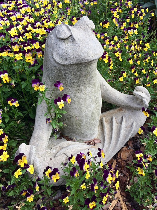 Frog in a yoga position surrounded by purple and yellow flowers